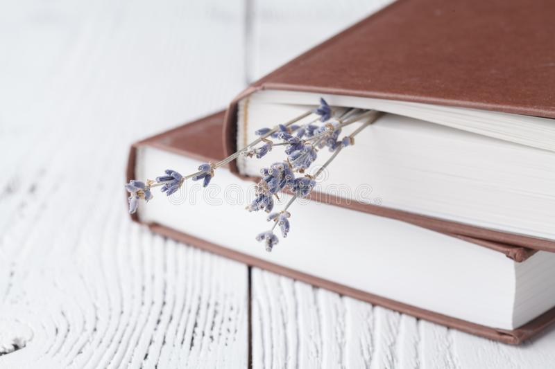 Dry lavender in the book royalty free stock photos