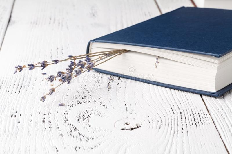 Dry lavender in the book stock photo