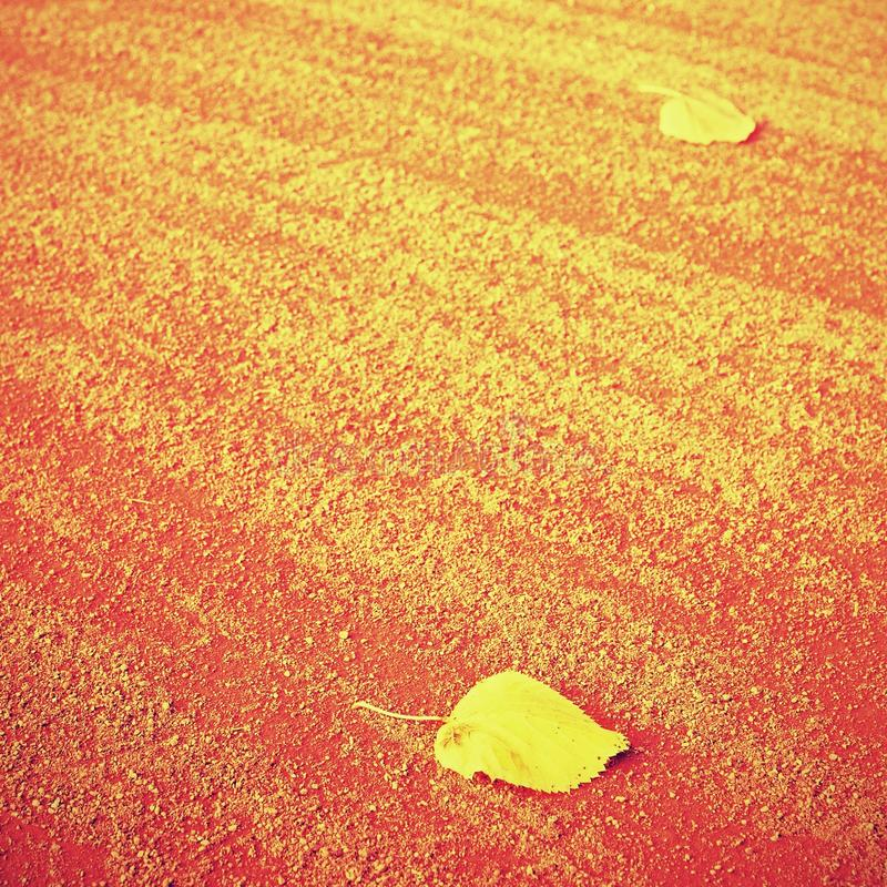 Dry leaf an tennis court. Dry light red crushed bricks surface royalty free stock image