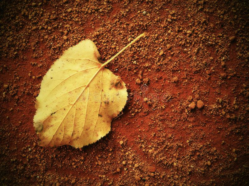 Dry leaf an tennis court. Dry light red crushed bricks surface stock photos