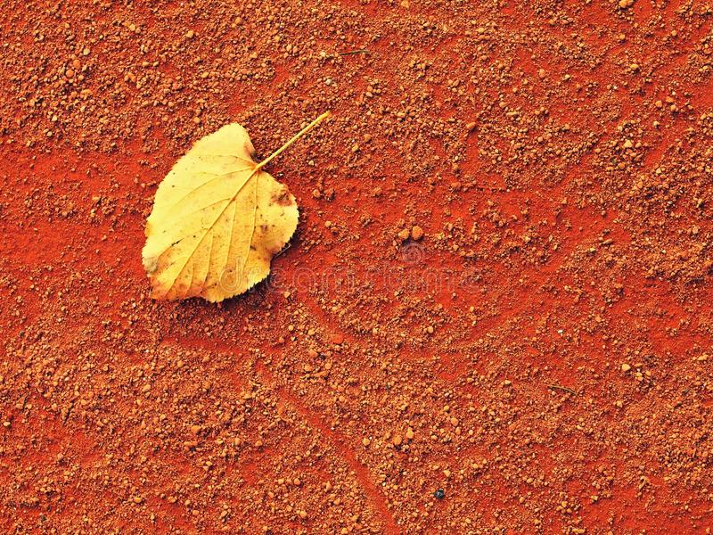 Dry leaf an tennis court. Dry light red crushed bricks surface stock photography