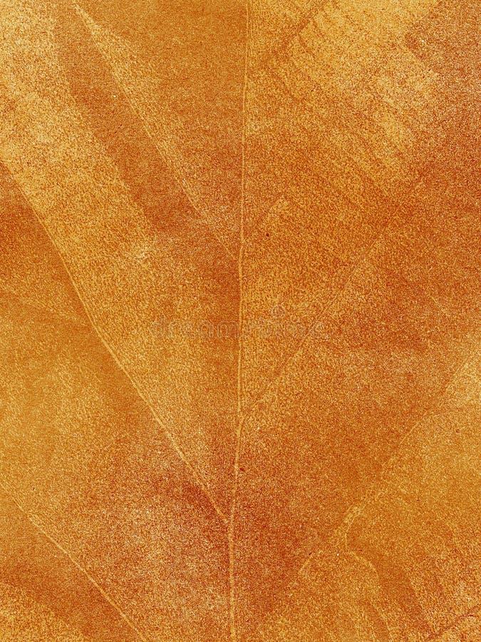 Download Dry Leaf Textured Stock Image - Image: 26442401