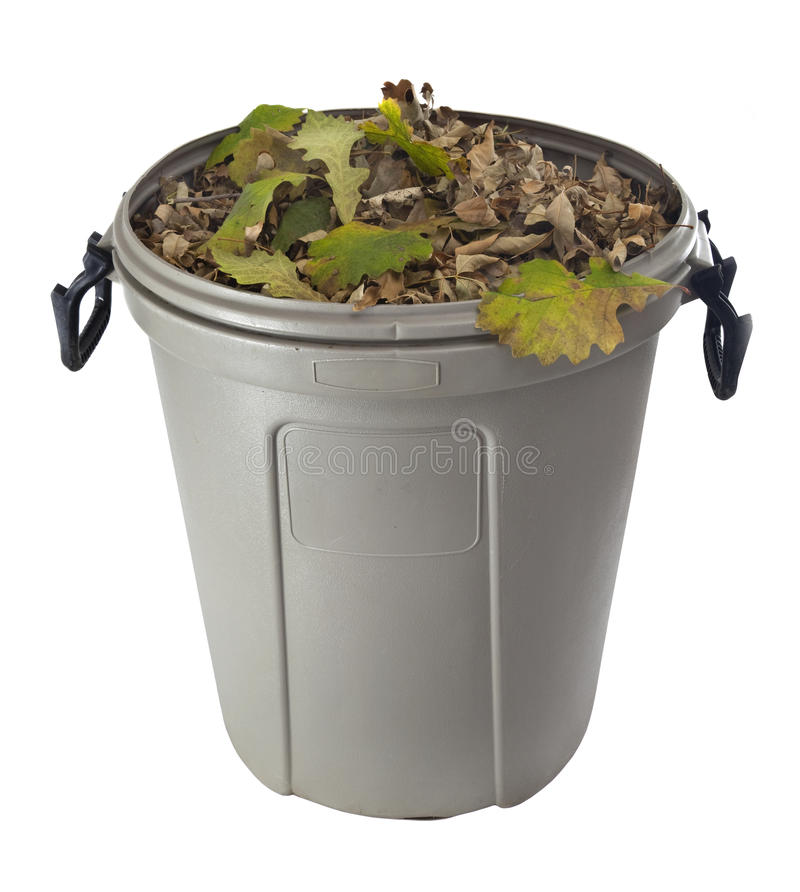 Dry leaves in a plastic garbage bin royalty free stock photos