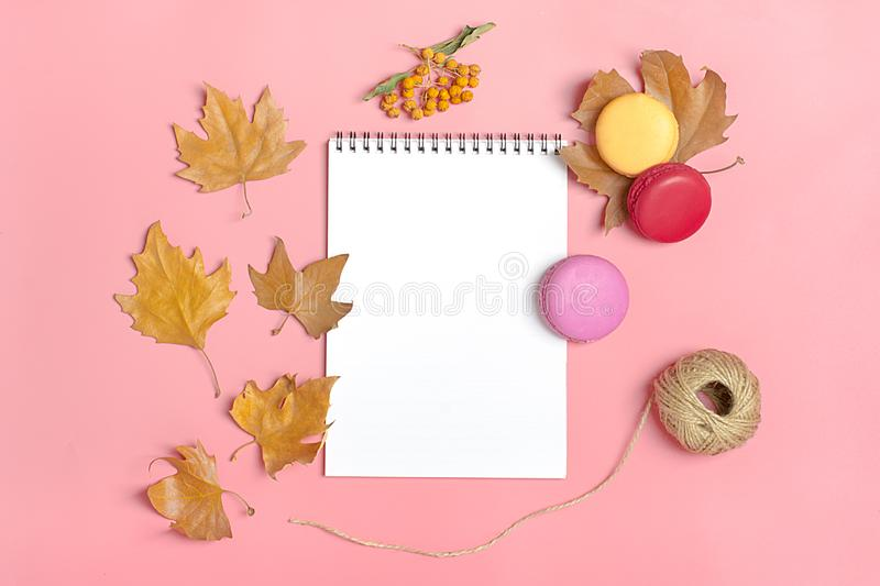 Dry maple leaves, macaroons and white notepad on pink background Autumn concept To do list Mock up Top view Flat lay. Copy space royalty free stock photo