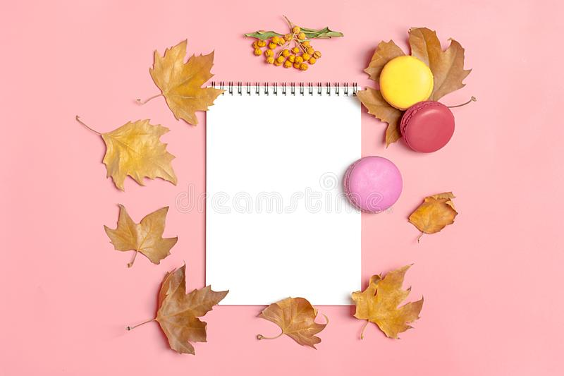 Dry maple leaves, macaroons and white notepad on pink background Autumn concept To do list Mock up Top view Flat lay. Copy space stock images