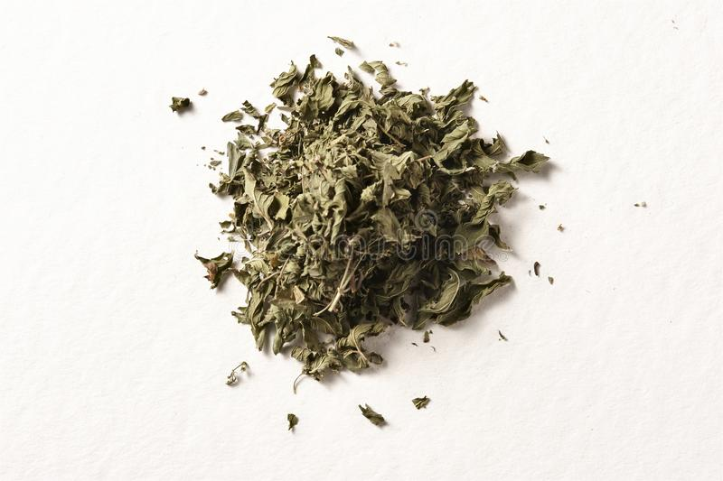 Dry mint leaves stock photography