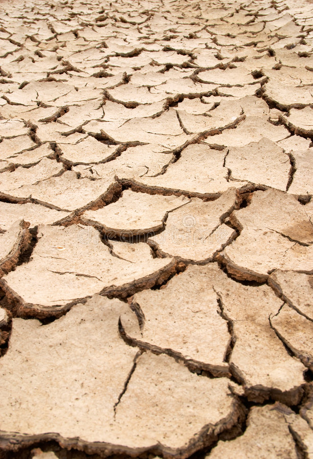 Dry mud cracks texture stock images