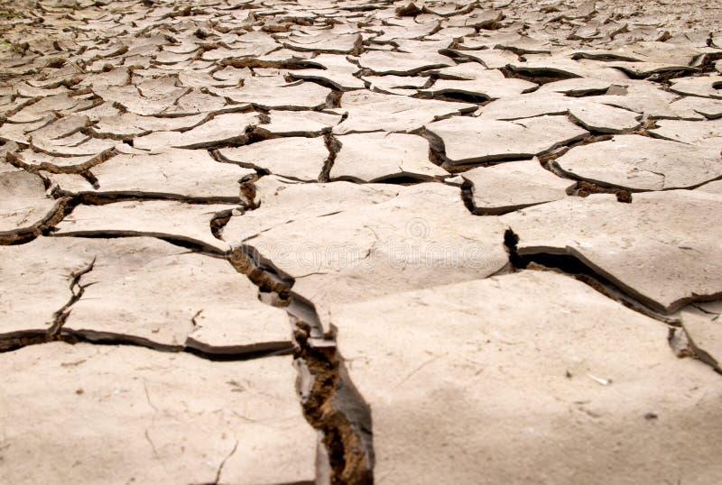 Dry mud cracks texture stock image