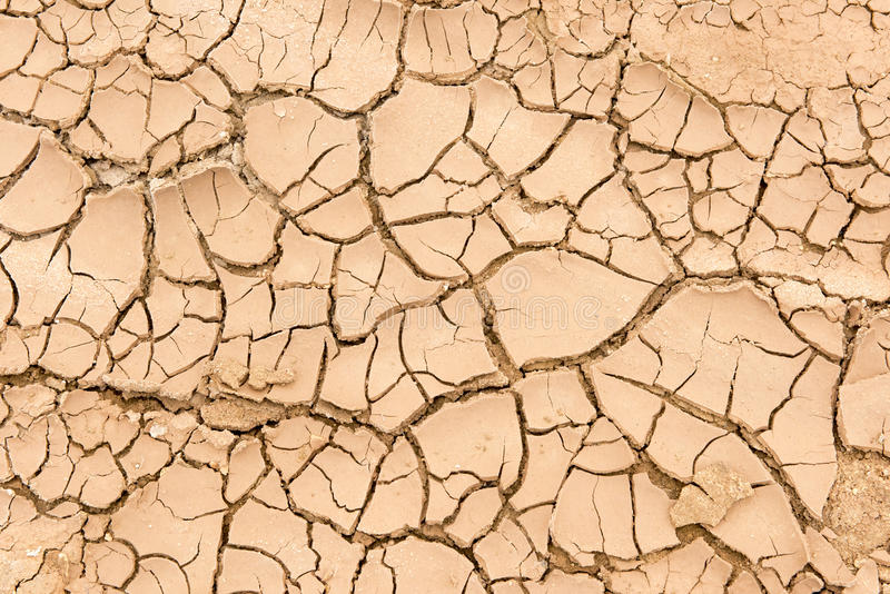 Dry Mud royalty free stock photography