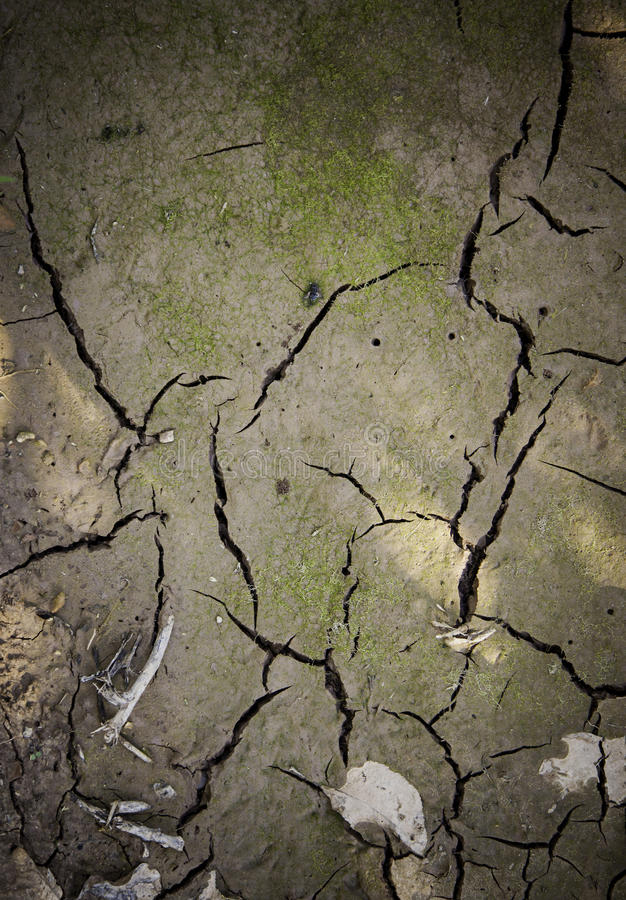 Dry mud soil due to drought royalty free stock images