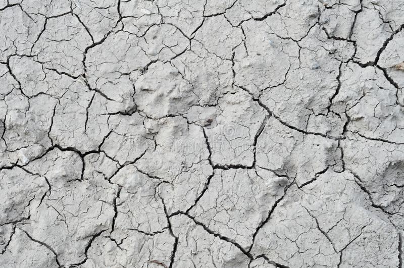 Dry Mud texture stock photos