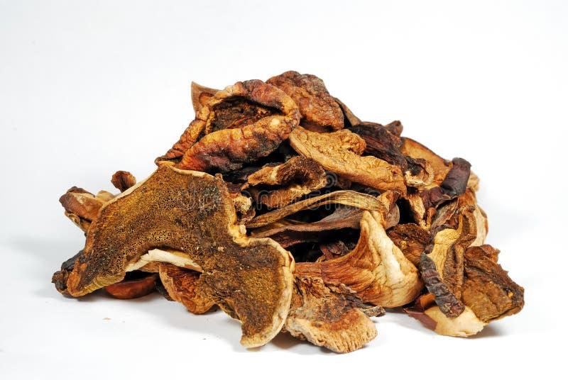 Download Dry Mushrooms Royalty Free Stock Photos - Image: 2025608