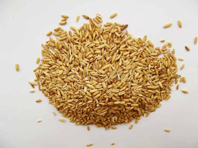Dry oat heap. stock images