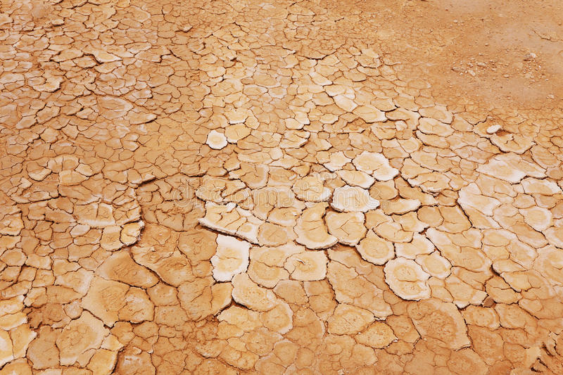 Dry, parched earth. Cracked and dry red-brown earth royalty free stock photos