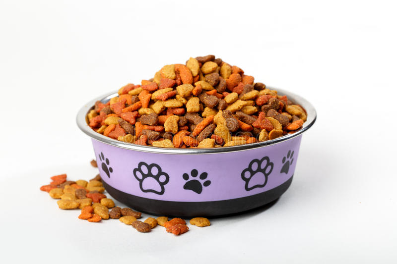 Dry pet cat dog food in granules in cute bowl stock photos