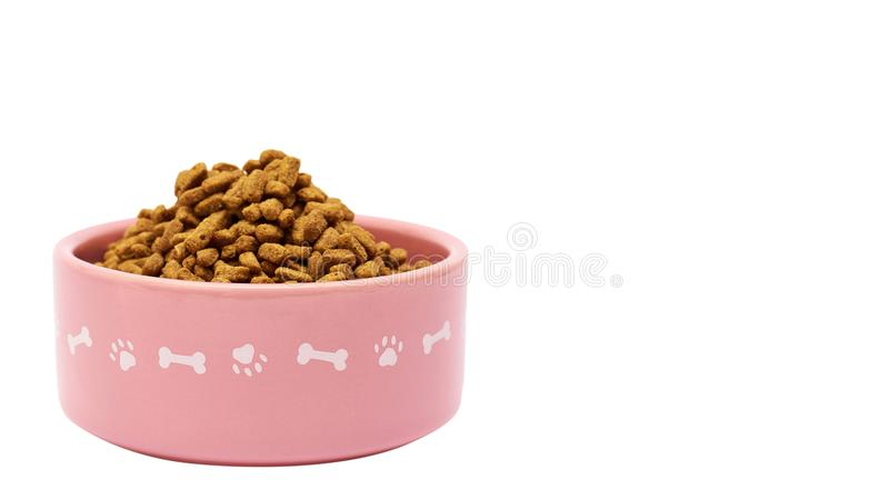 dry pet food in bowl isolated on white background. copy space, template royalty free stock photography