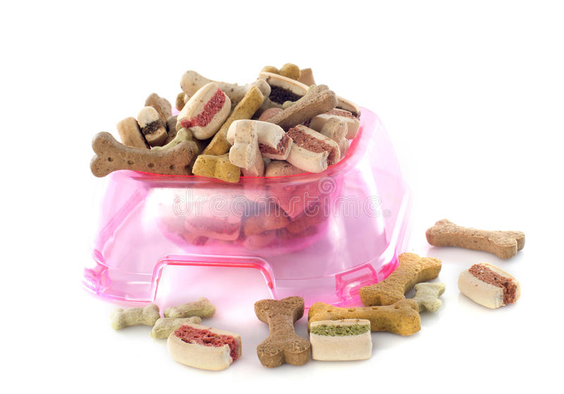 Dry pet food royalty free stock photography