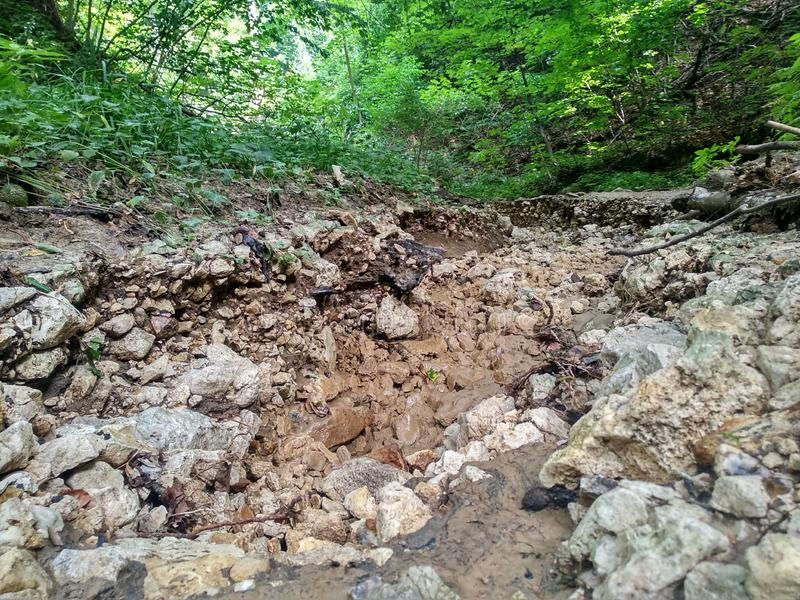 Dry place the flow of a mountain river, stones, large stones along the entire length of the river on the background of green royalty free stock photo