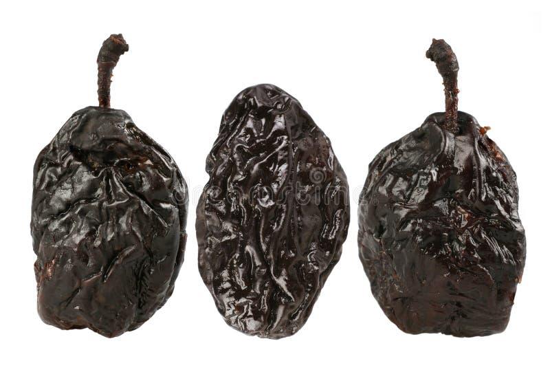 Dry plum royalty free stock image