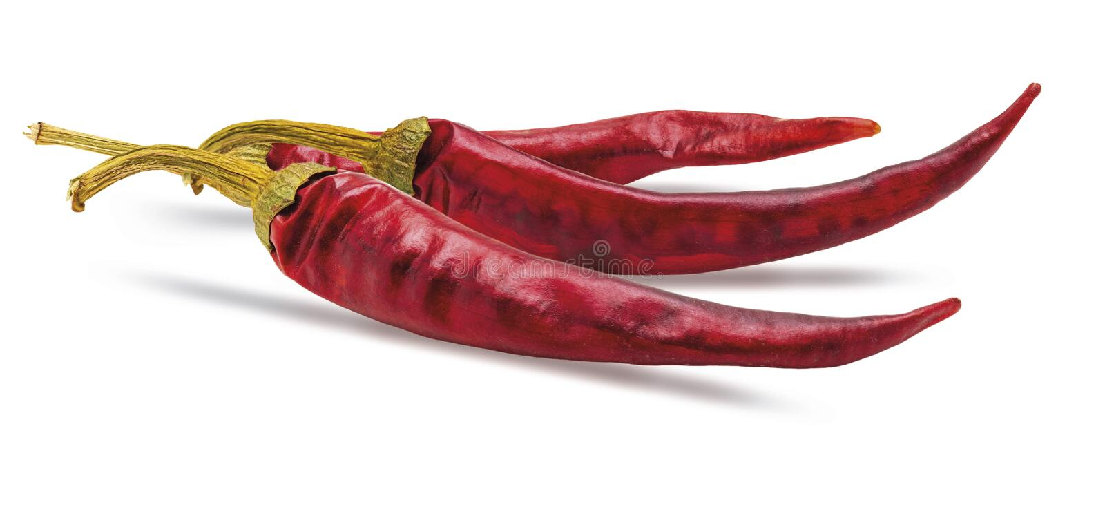 3 dry red chilli peppers. Isolated on white background stock photography