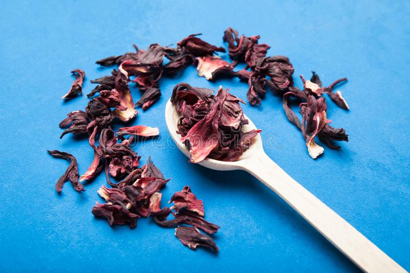 Dry red hibiscus tea in wooden spoon.  royalty free stock photography