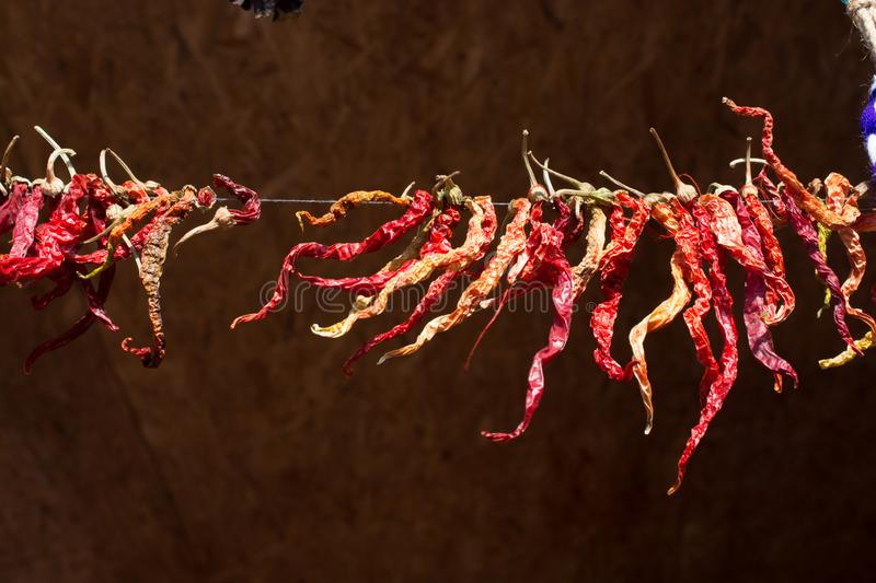 Dry red pepper found at the market stand stock image