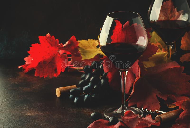 Dry red wine from pinot noir grapes in large glasses, autumn still life with red and yellow leaves on dark background, low key, s royalty free stock images