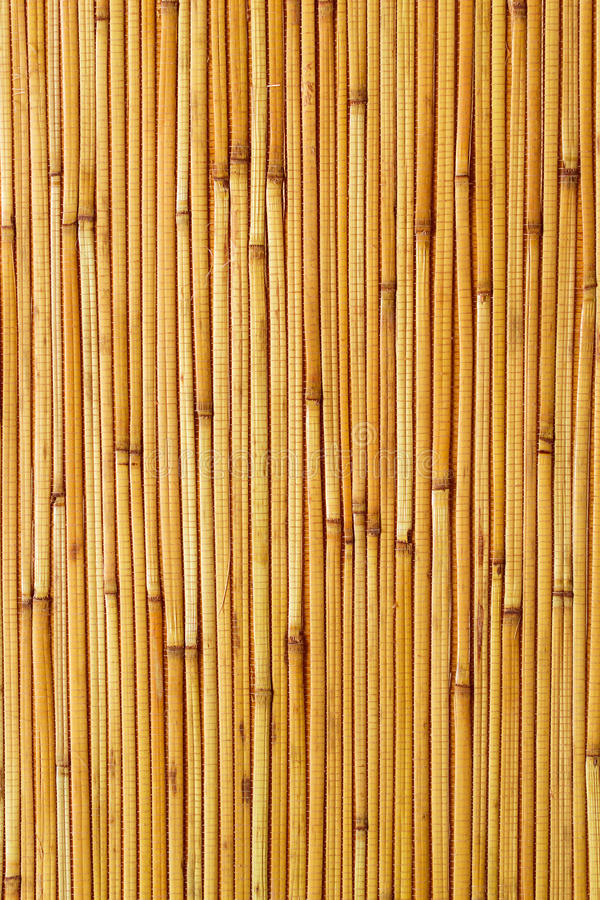 Dry reeds texture wallpaper stock photography