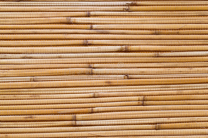 Dry reeds texture wallpaper stock image