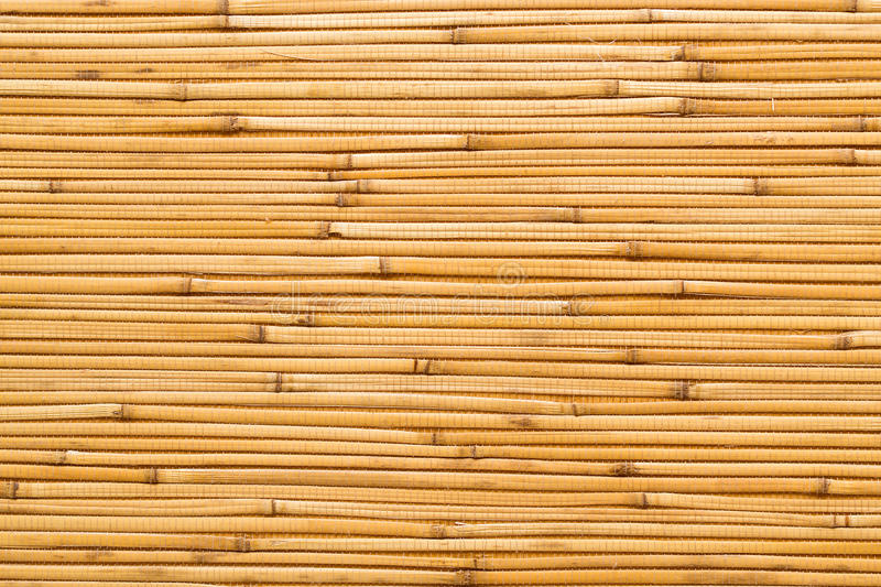 Dry reeds texture wallpaper. Dry reeds texture. Organic nature wallpaper of yellow cane. Natural warm wooden background with bamboo and straw stock photography