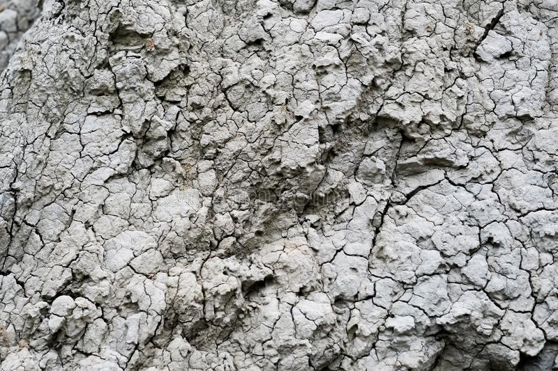 Dry river bed. Close up of dry river bed with cracked ground stock images