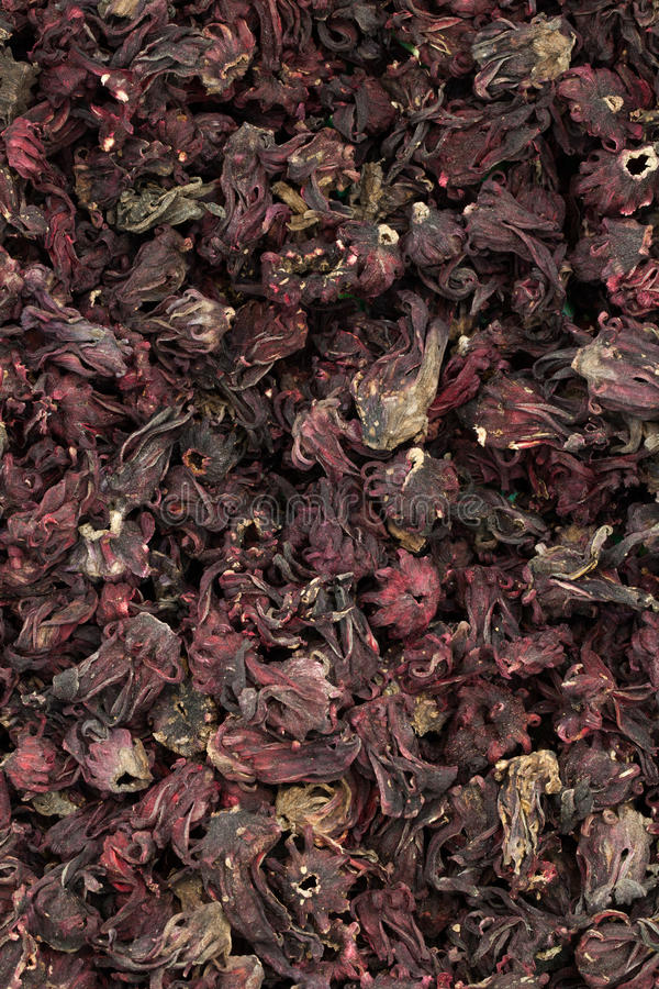Download Dry roselle stock photo. Image of flowers, pile, batch - 28680020