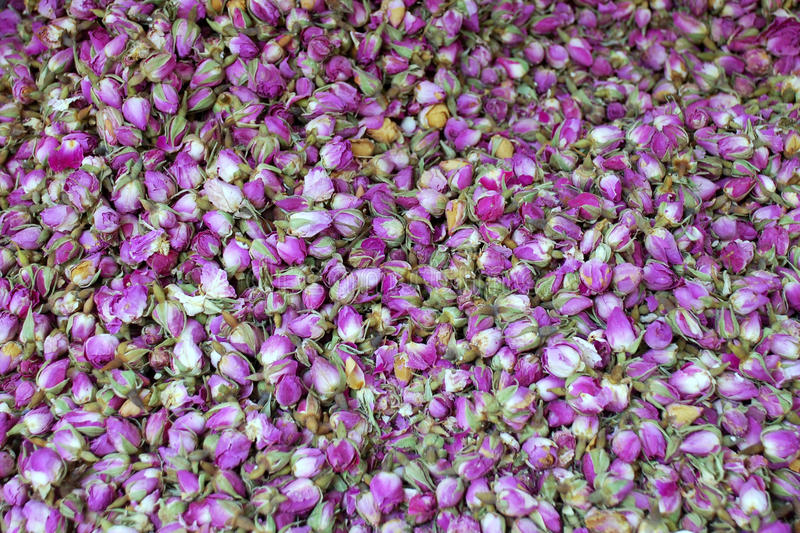 Download Dry Roses stock photo. Image of textured, background - 12343848