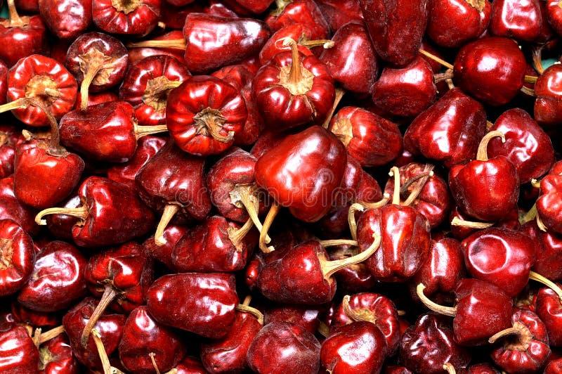 Dry round chili pile royalty free stock image