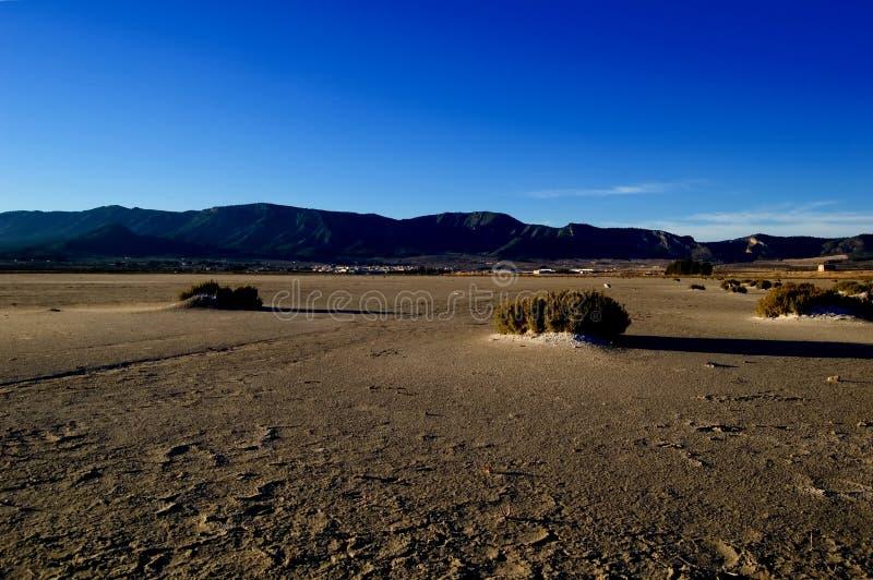 Dry salt lake - desert landscape