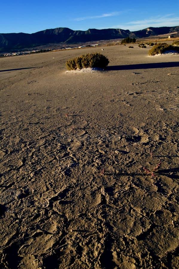 Dry salt lake - desert landscape. Global warming, climate change - Laguna de Salinas (Spain stock photography