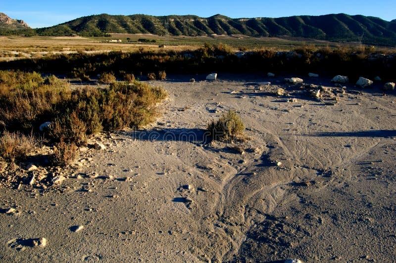 Dry salt lake - Rural landscape. Dry salt lake - global warming, climate change, erosion detail - Laguna de Salinas (Spain stock photography