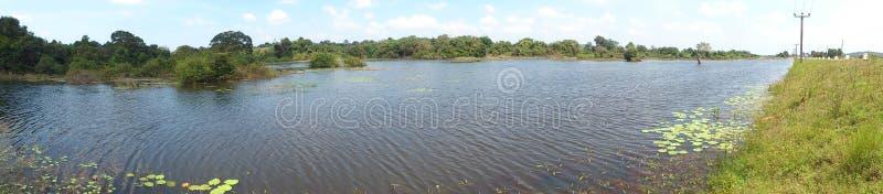 Dry season in the lake stock photo