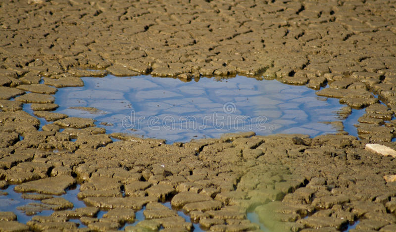 Dry soil 2. Dry soil with a puddle of water royalty free stock image