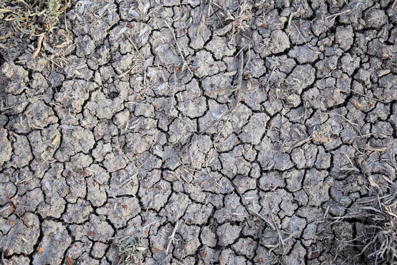 Dry soil abstract background. Drought. Gray dry soil. Soil background. Cracked soil background. Earth pattern. Soil texture. Crack royalty free stock photos