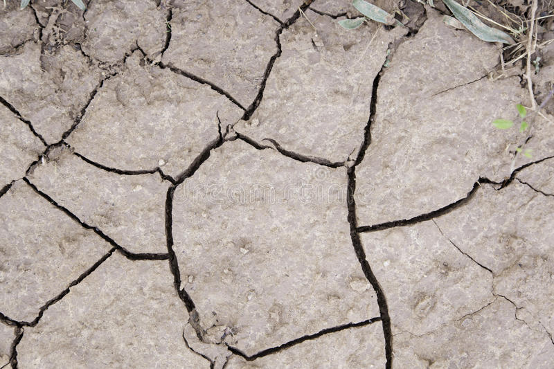 Dry soil by a drought stock photography