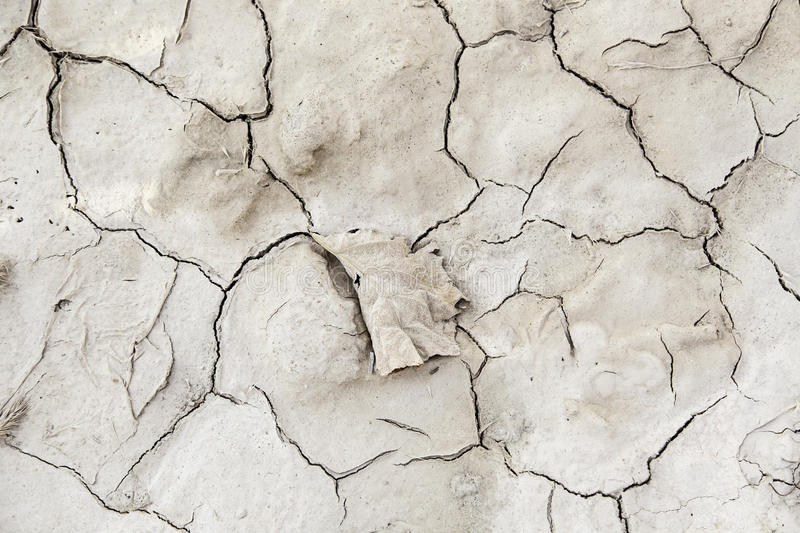 Dry soil by a drought stock photo