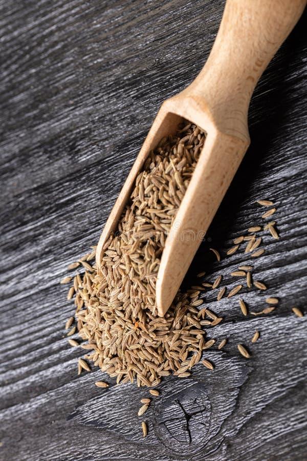 Dry spices cumin royalty free stock photos
