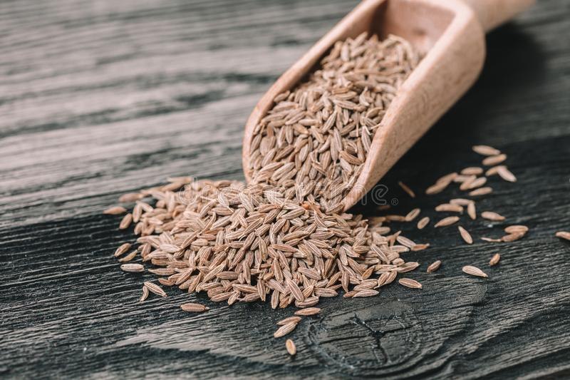 Dry spices cumin royalty free stock photography