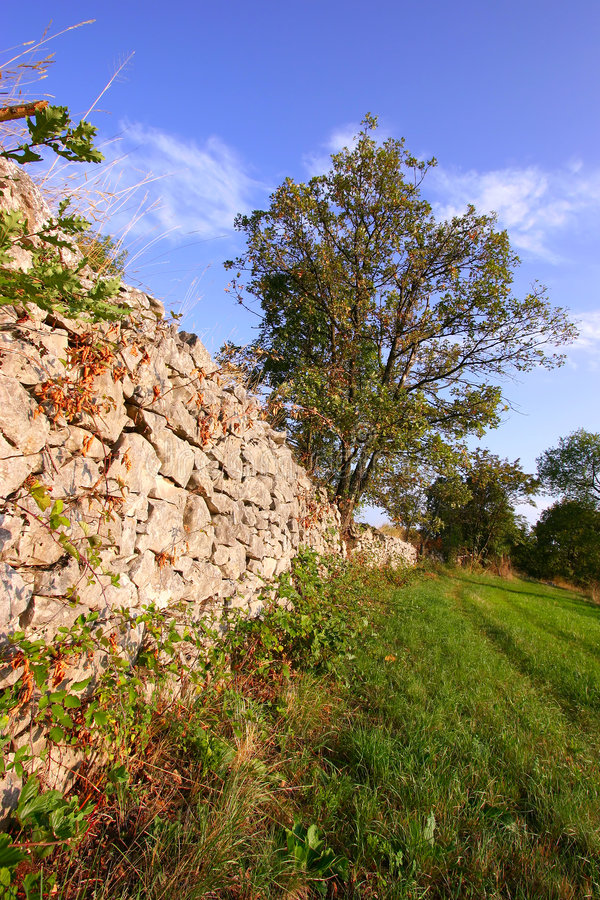 Download Dry Stone Wall In Countryside Stock Image - Image of stone, wood: 3037883