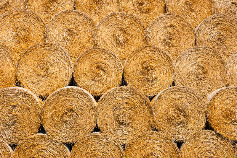 Download Dry Straw Texture Stock Photos - Image: 20861283