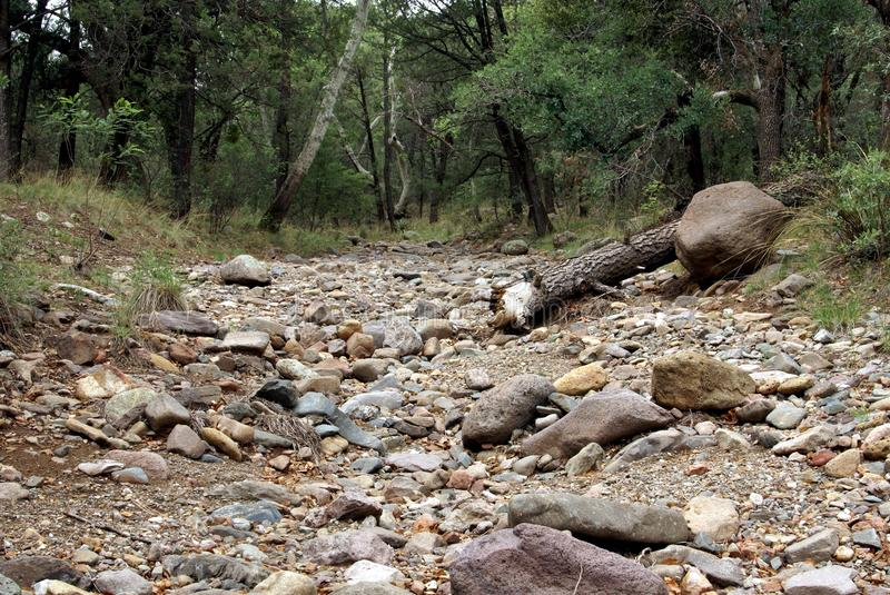 Dry Stream Bed royalty free stock image