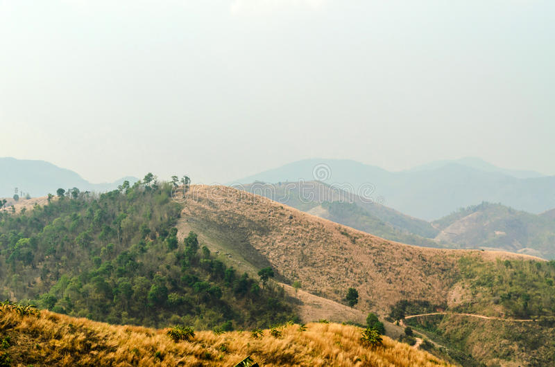 Dry summer pastures mountains. Mae Suai in Thailand royalty free stock images