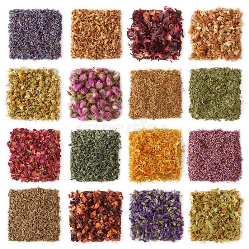 Free Dry Tea Stock Image - 12181851