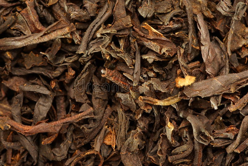 Dry Tea Royalty Free Stock Image